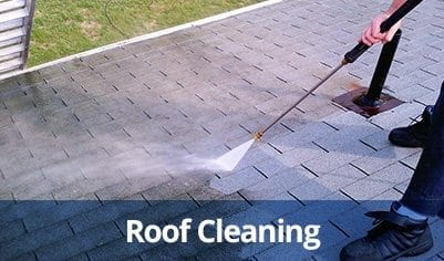 Roof Cleaning in Clearwater and Palm Harbor