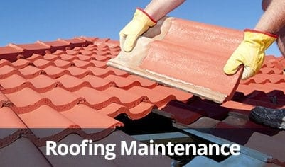 Roofing Maintenance in Clearwater and Palm Harbor